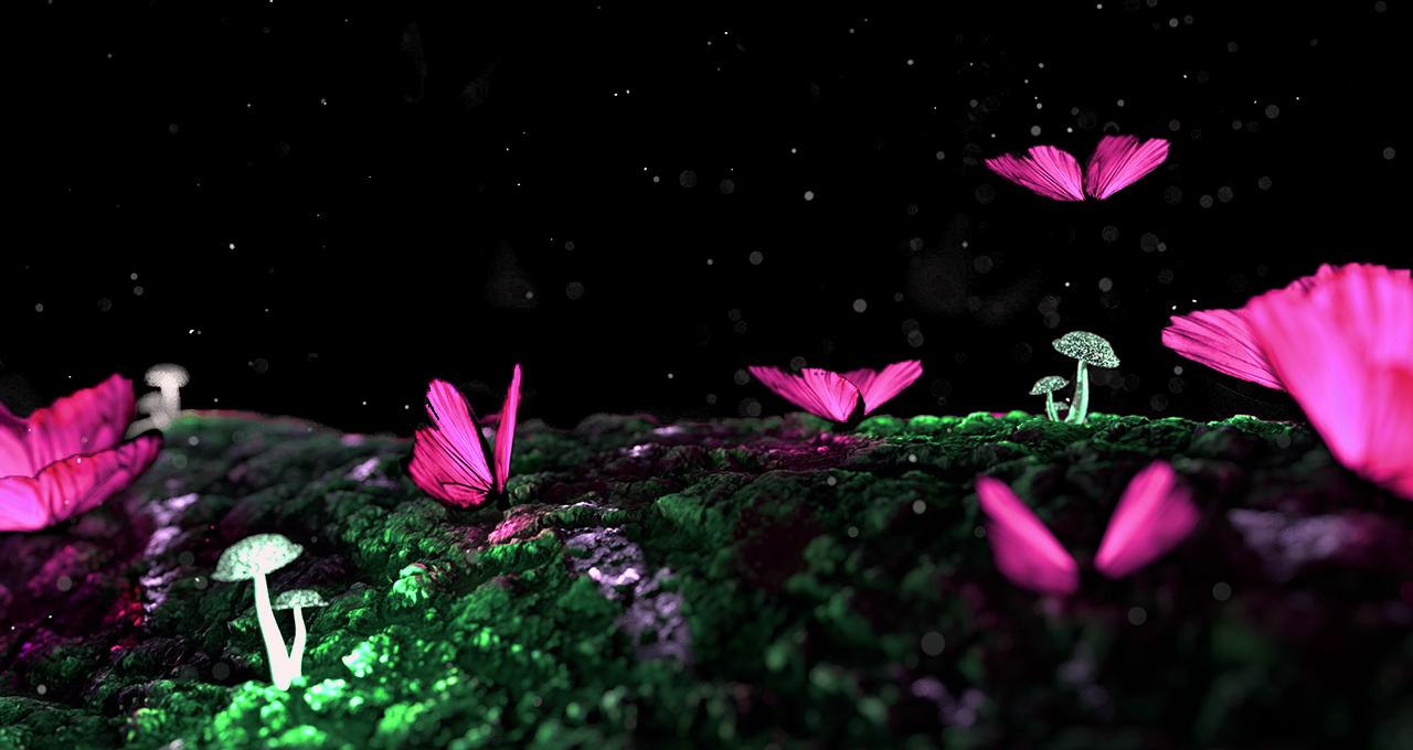 papilon rose